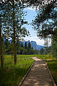'Boardwalk, Yosemite Valley, Yosemite National Park; California, United States of America'