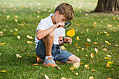 'A young boy using a magnifying glass in a park; Edmonton, Alberta, Canada'