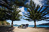 'Beachfront camping in Matauri Bay; Northland, New Zealand'