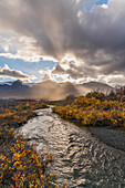 Scenic autumn view of Mule Creek along the Haines Highway, British Columbia, Canada