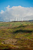 'Windmills spin on a hillside above the coast; Maui, Hawaii, United States of America'