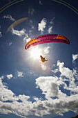 'Paraglider at Makapuu Point; Oahu, Hawaii, United States of America'