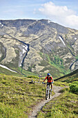 Woman rides a full suspension mountain bike on the Resurrection Pass Trail in the Chugach National Forest, Kenai Peninsula, South-central Alaska