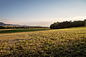 view from Moegglingen towards the so called three Emperor Mountains that are escarpment outliers in between Goeppingen and Schwaebisch Gmuend, Swabian Alb, Baden-Wuerttemberg, Germany