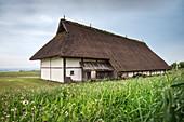 nave long house at open air museum Heuneburg, celtic settlement Pyrene, Hundersingen urban district of Herbertingen, Sigmaringen district, Swabian Alb, Baden-Wuerttemberg, Germany