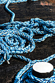 A blue plastic rope for fixing ships to a bollard, Rotterdam, Netherlands
