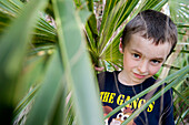 Boy looking through foliage, portrait