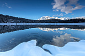 Woods and snowy peaks are reflected in the clear water of Pal?? Lake Malenco Valley Valtellina Lombardy Italy Europe