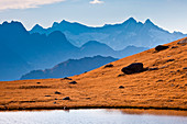The peaks of the Valley of Chiareggio on the horizon from the bottom of Lake Campagneda. Valmalenco. Valtellina. Lombardy Italy Europe