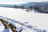 Winter landscape with wooden bench, tracks in the snow, new fallen snow, Harz, Sankt Andreasberg, Lower Saxony, Germany