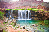 A person jumps off Fifty Foot Falls in the Grand Canyon.