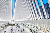 the Oculus, view down at passengers, futuristic train station by famous architect Santiago Calatrava next to WTC Memorial, Manhattan, New York City, USA, United States of America
