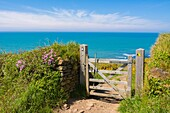 A gate on the South West Coast Path overlooking the Atlantic Ocean near Abbotsham, North Devon, England.