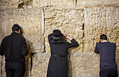 men's prayer area, men praying at the Western Wall, Wailing Wall, Jewish Quarter, Old City, Jerusalem, Israel.
