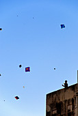 India, Rajasthan State, Jaipur, the feast of the kite, children playing kites on rooftops