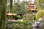 Australia, New South Wales, Sydney, Darling Harbour, Chinese Garden