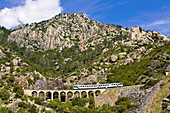 France, Haute Corse, the Trinighellu, the Corsican little train on a viaduct before the arrival in Venaco on the journey between Ajaccio and Corte