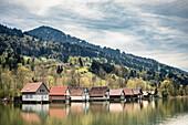 Alpsee, Immenstadt, Allgäu, Bayern, Deutschland, Berge, See, Bootshaus, Idylle