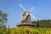 Windmill in Soby, Island Ærø, South Funen Archipelago, Danish South Sea Islands, Southern Denmark, Denmark, Scandinavia, Northern Europe