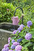 Landleben, Gießkanne auf einem Brunnen, Oberbayern, Süddeutschland, Deutschland, Europa