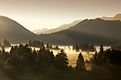 Morning Fog in the mountains, Allgaeu Alps, Allgaeu, Bavaria, Germany