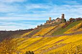 Thurant castle, near Alken, Mosel, Rhineland-Palatinate, Germany