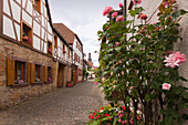 Street in the old town, Bad Bergzabern, Palatinate Forest, Rhineland-Palatinate, Germany