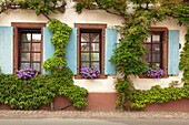 Vintner house, Rhodt unter Rietburg, Palatinate Forest, Rhineland-Palatinate, Germany