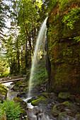 Waterfall near Menzenschwand, Black Forest, Baden-Wuerttemberg, Germany