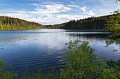Windgfaellweiher near lake Schluchsee, Black Forest, Baden-Wuerttemberg, Germany