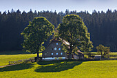 Farmhouse near Breitnau, Black Forest, Baden-Wuerttemberg, Germany