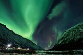 Northern lights, Aurora borealis, Rorvika, Austvagoya, Lofoten Islands, Norway, Skandinavia, Europe