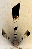 France, Loir et Cher, Loire Valley listed as World Heritage by UNESCO, Chateau de Chambord, inside the central Keep of the double helix staircase attributed to Leonardo Da Vinci