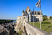 France, Indre et Loire, Amboise, Loire Valley listed as World Heritage by UNESCO, Chateau d'Amboise, the dwelling of the King and the Minimes Tower
