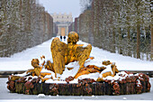 France, Yvelines, snow covered park of the Chateau de Versailles, listed as World Heritage by UNESCO, Saturn Basin also called the Winter Basin artwork by Girardon