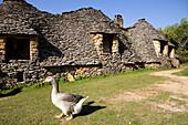 France, Dordogne, Perigord Noir, Dordogne Valley, Saint Andre d'Allas, in the place called Calpalmas, Cabanes du Breuil, former agricultural dependencies in dry stones