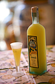 Italy, Campania, Amalfi Coast, listed as World Heritage by UNESCO, Positano, limoncello (local alcohol made with lemon)