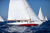 '12m Yacht ''Emilia'', Naval Architect Attilio Costaguta 1930, Classic Sailing Regatta ''Les Voiles de St. Tropez'', St. Tropez, Côte d'Azur, France'
