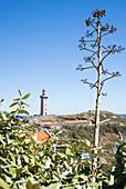 Lighthouse of Cap Béar, Côte Vermeille, Mittelmeer, Pyrénées Orientales, Occitanie, Languedoc-Roussillon, Frankreich