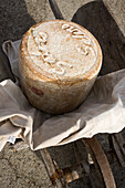 France, Cantal, Pailherols, local speciality of Fourme, cheese Cantal Salers AOC