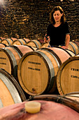 France, Cote d'Or, Cultural landscape of Burgundy climates listed as World Heritage by UNESCO, Route des Grands Crus (Wine Road), Gevrey Chambertin, cellar of Domaine Drouhin Laroze Wine producing property