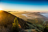 View from the Belchen south on the Wiesental valley and the Swiss Alps, sunrise, autumn, Black Forest, Baden-Wuerttemberg, Germany