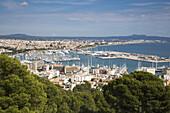 Overhead of marina and city from Castell de Bellver, Palma, Mallorca, Balearic Islands, Spain