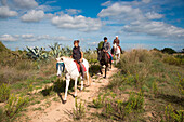 Horseback ride excursion from Finca Predio Son Serra Hotel through S'Albufera Natural Park landscape, near Can Picafort, Mallorca, Balearic Islands, Spain
