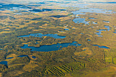 Aerial view of a road passing through low lying land with lakes and ponds, South, central Alaska, Alaska, United States of America