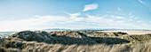 Sand dunes with grass, San Luis Obispo, California, United States of America