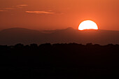 Setting sun overtop of the African landscape, South Africa