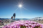 Hiker, Fourclada Rims 2940m, Sesvenna range between Unterengadin Switzerland and Vinschgau, Italy