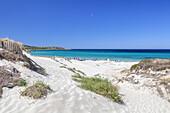 Dune on Bodri beach near Ile Rousse, Corsica, Southern France, France, Southern Europe