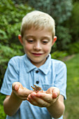 Caucasian boy cupping grasshopper in hands